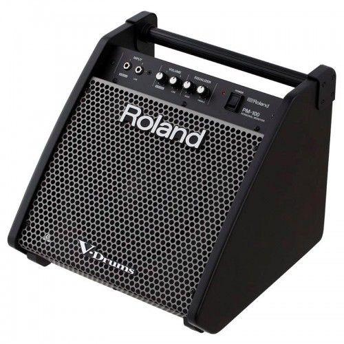 MONITOR ROLAND PM-100
