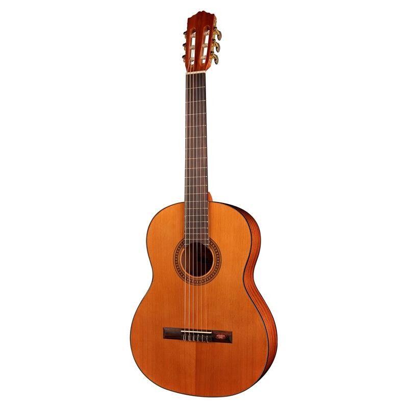 GUITARRA SALVADOR CORTEZ CC-10