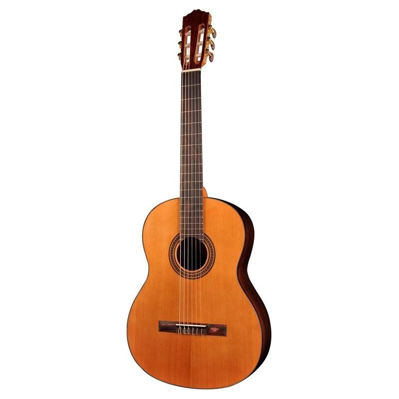 GUITARRA SALVADOR CORTEZ CC-15