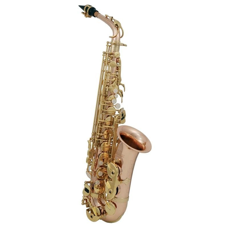 SAXO ALTO ROY BENSON AS-202G MIB